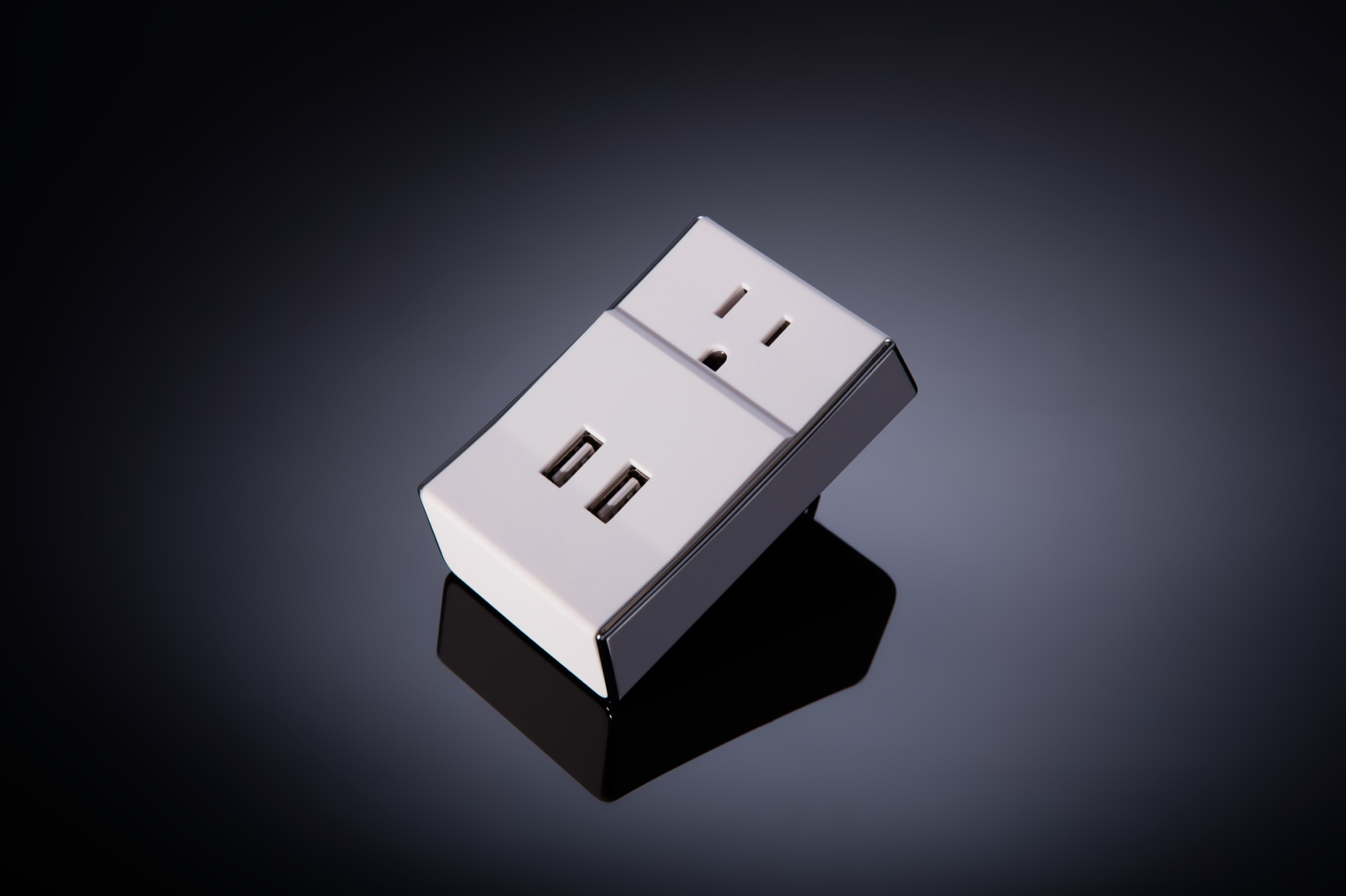 Dual USB Wall Charger with Standard Power Socket | Schatzii